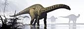 Group of Apatosaurus dinosaurs, illustration