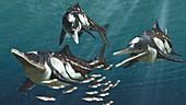 Caypullisaurus prehistoric marine reptile, illustration