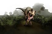 Tyrannosaurus dinosaur, illustration