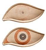 Trireme talismanic eye.
