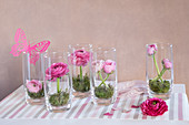 Pink and deep pink ranunculus and moss in drinking glasses
