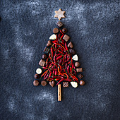 Chocolate Chili Tree
