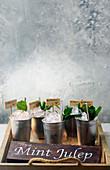 Pfirsich-Mint-Julep