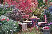 Sitzplatz im Herbstgarten am Beet mit Aster, Dahlie, Rispenhortensie, Herbstanemone, Spindelstrauch und Federborstengras