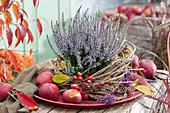 Knospenheide 'Hilda' in Clematisranken auf Tablett, Äpfel, Zieräpfel und Beeren vom Liebesperlenstrauch als Deko
