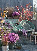 Herbstbalkon mit Chrysanthemen, Liebesperlenstrauch, Schneeball und Gräsern, Sessel mit Fell und Decke