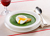 A poached egg on bread with green sauce