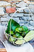 Fresh figs in wire basket
