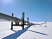 Alaskan oil pipeline
