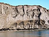 Alaskan permafrost cliff