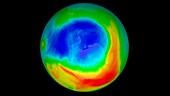 Atypical Antarctic ozone hole maximum, 2019