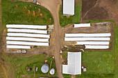 Dairy farm, Wisconsin, USA