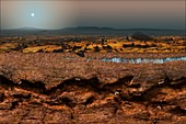 Martian landscape and microbial extremophiles, illustration