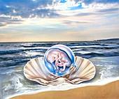 Human foetus in a seashell, conceptual illustration