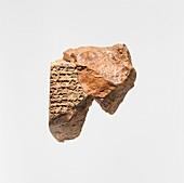 Cuneiform inscription, 7th-6th century BC