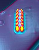 Antiferromagnetic order in iron, STM image