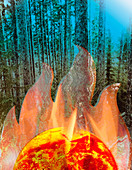 Global warming and forest fires, illustration