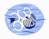 Fish caught in plastic, illustration
