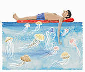 Jellyfish below lilo, illustration