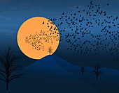 Flock of birds in moonlight, illustration