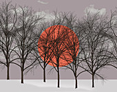Sun behind bare winter trees, illustration