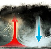 Updraft and downdraft in storm system, illustration