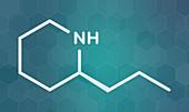 Coniine herbal toxin molecule, illustration