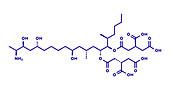 Fumonisin B1 mycotoxin molecule, illustration