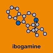 Ibogamine alkaloid molecule, illustration