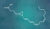 Leukotriene A4 molecule, illustration