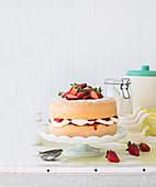 Sponge Cake mit Erdbeeren