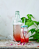 Rhubarb and Rose Fizz