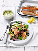 Barbecued Salmon with Chermoulla Sauce