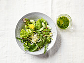 Mixed leaf salad with young dandelions and beansprouts