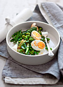 Steamed fennel and garlic eggs on green vegetables