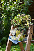 A bunch of summer medicinal herbs and meadowsweet syrup on a wooden ladder