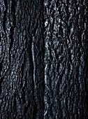 Black structured background