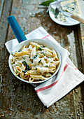 Penne with gorgonzola sauce and sage