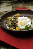 Poached egg with a caper sauce