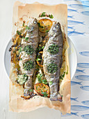 Fried trout on baking paper