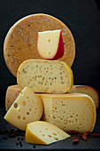 Different types of cheese with farm cheese