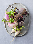 Winter vegetables (beetroot, navettes, radish)