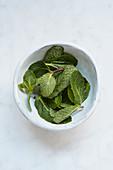 Fresh mint in a ceramic bowl