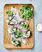 Austern mit Gurken-Schalotten-Salat