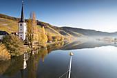 The River Mosel near Piesport, Rhineland-Palatinate, Germany