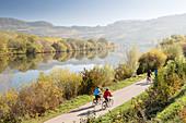 Radfahrer bei Leiwen an der Mosel, Rheinland-Pfalz, Deutschland