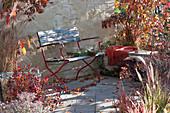 Bank auf Herbst-Terrasse zwischen Gehölzen mit Herbstfärbung und Gräsern