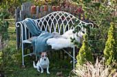 Bank mit Fell und Decke im vorweihnachtlichen Garten, Hund Zula