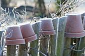 Tontöpfe über die Latten vom Gartenzaun gestülpt