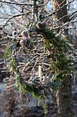 Kleiner Kranz aus Hemlocktanne mit Kerze, Stern und Zapfen\nan Baum gehängt